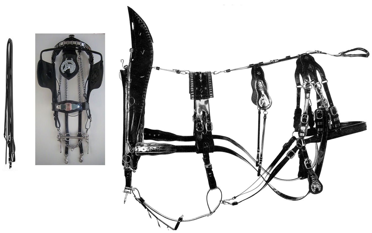Todd Style Biothane Team Show Harness