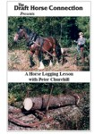A Horse Logging Lesson
