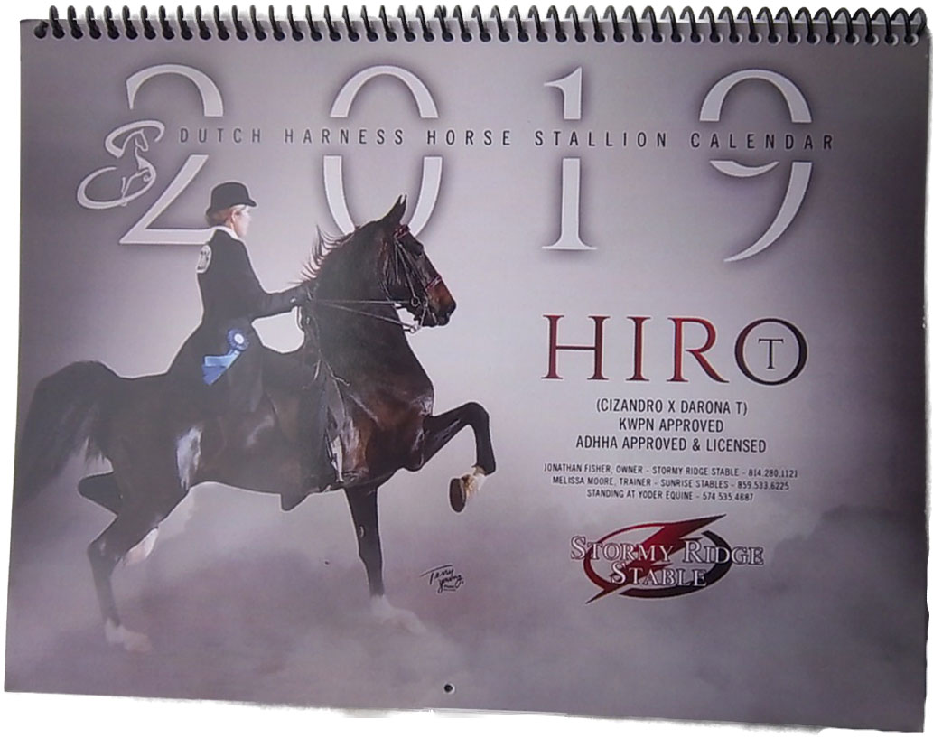 Dutch Harness Stallion Calendar