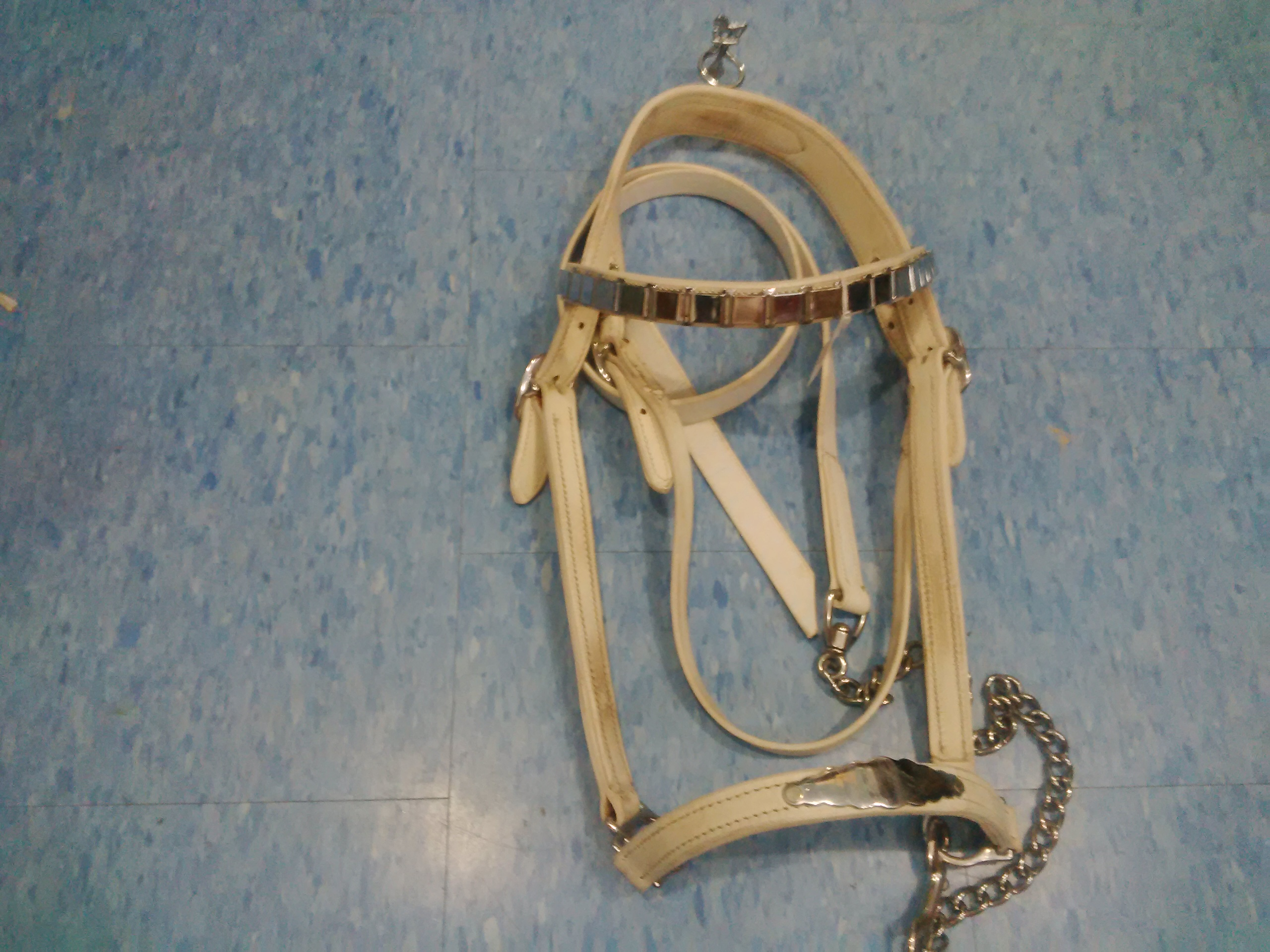 Draft Size Leather Show Halter