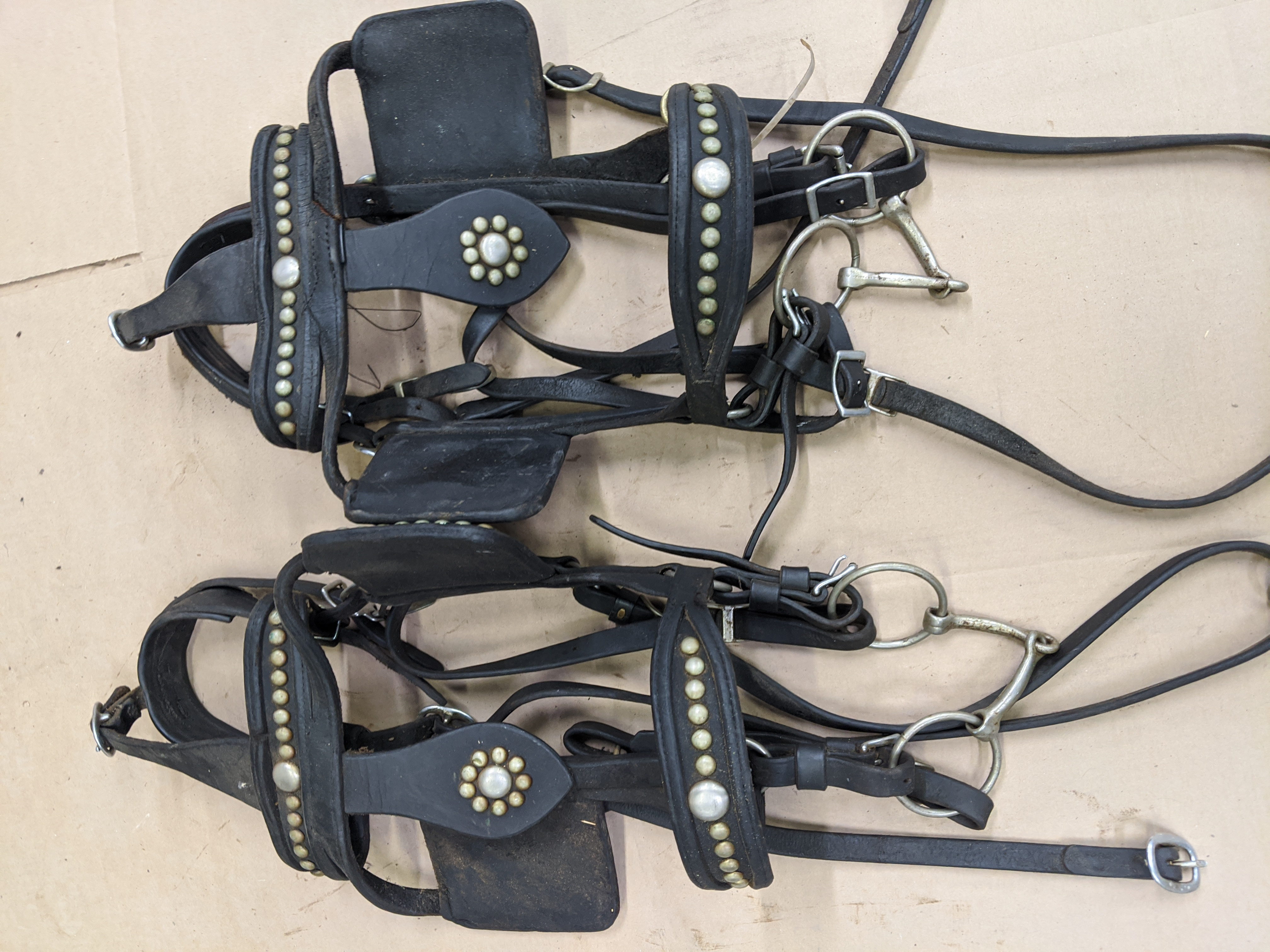Leather Team Bridles