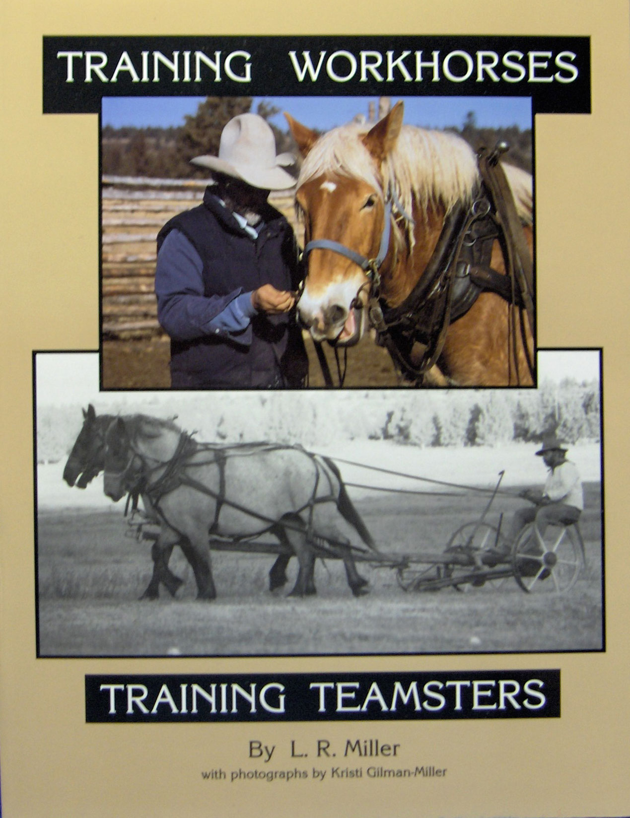 Training Workhorses And Training Teamsters