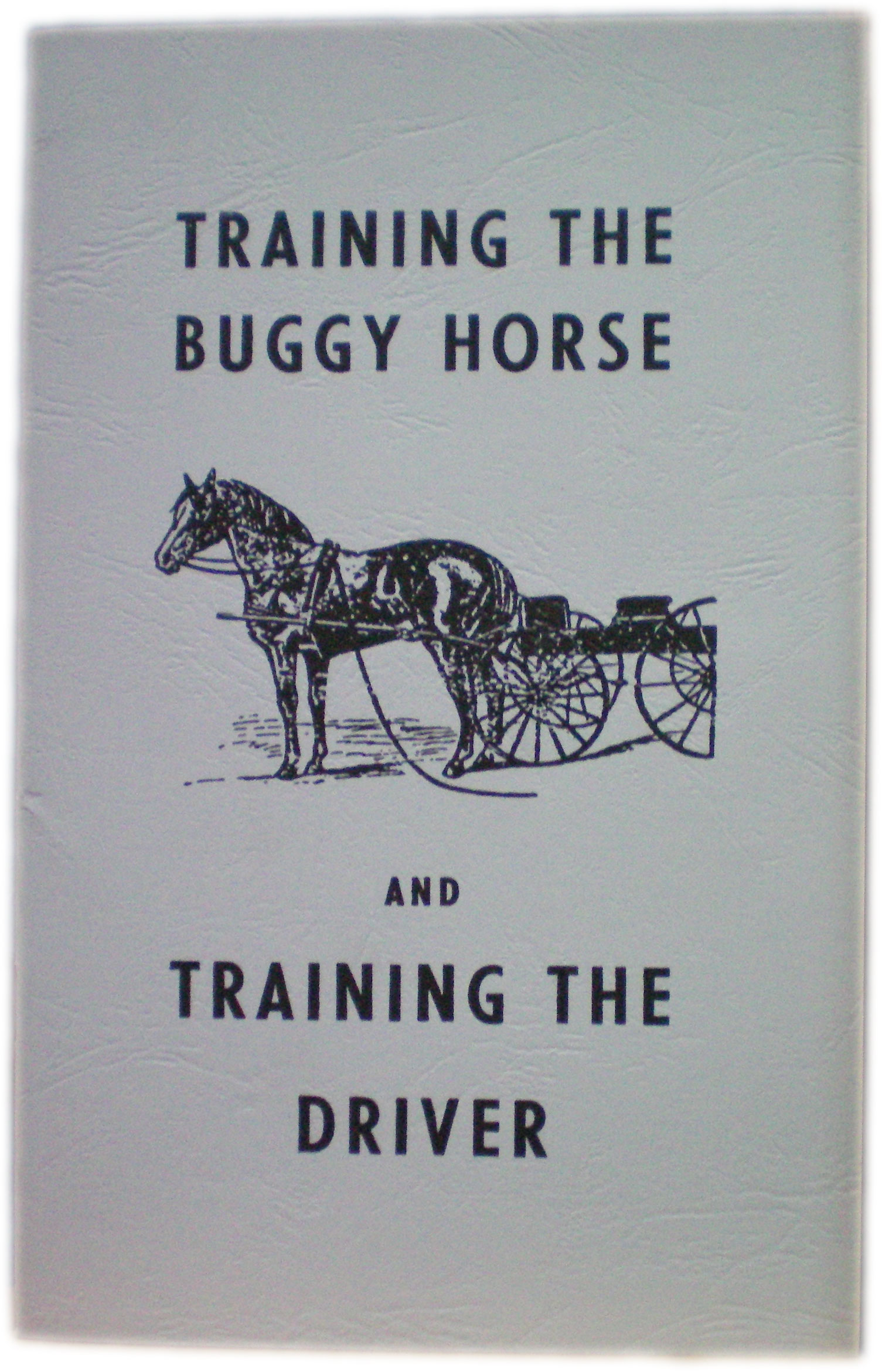 Training The buggy Horse And Training The Driver